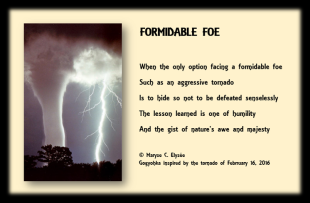 Formidable Foe