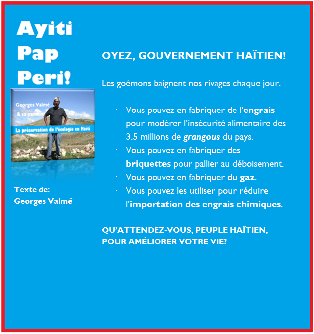 AYITI PAP PERI 02