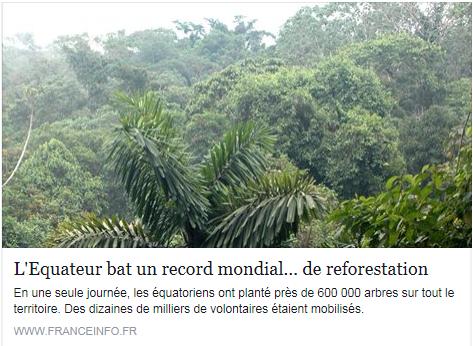 580.000 arbres, 200 espèces différentes: c'est tout simplement du jamais vu en moins de 24 heures! Pour participer, il suffisait de planter un arbre, de prendre une photo et d'envoyer un tweet avec le hashtag de l'opération. Les volontaires avaient été convoqués par le ministère équatorien de l'Environnement, mais aussi les autorités locales, les entreprises privées, et même... l'armée! Des soldats se sont mobilisés, munis de pelles et de pioches.