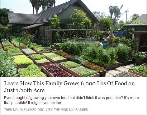 The Dervaes family live on 1/10th of an acre 15 minutes from downtown L.A.. In itself that's not strange. What's crazy is that they manage to maintain a sustainable and independent urban farm. Complete with animals! In a year they produce around 4,300 pounds of veggies, 900 chicken , 1000 duck eggs, 25 lbs honey, and pounds of seasonal fruit. There are over 400 species of plants. What?! They have everything they need to 'live off the land.' From beets to bees. Chickens to chickpeas.
